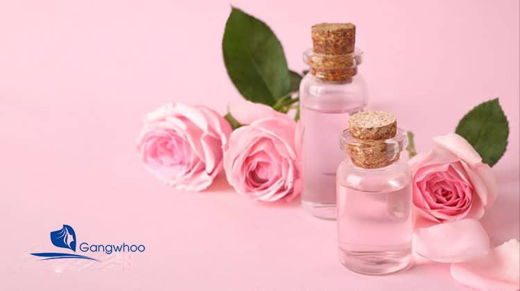 Cách đắp mặt nạ nha đam làm trắng da mặt với nước hoa hồng